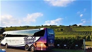 Alsace vinresa med flyg & buss