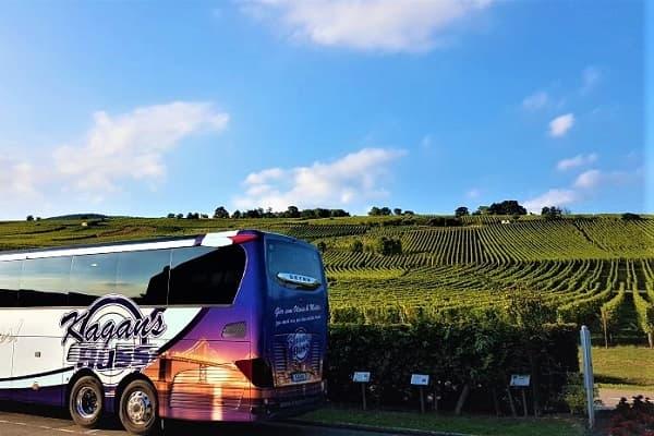 Alsace med vinprovning