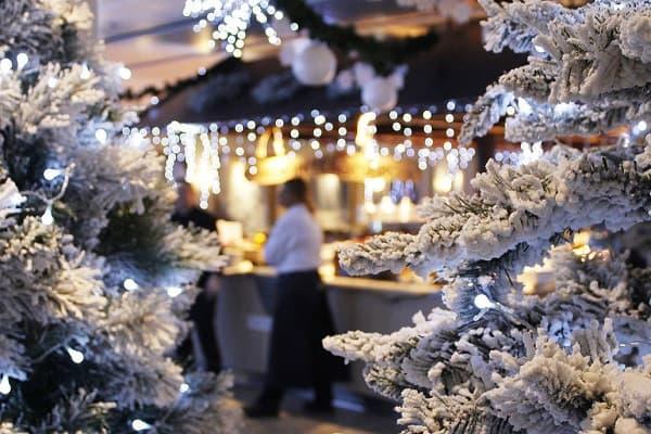 Birka-kryssning Magiskt julbord